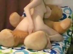 Weenie teddy bear