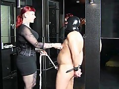 Femdom membrane with a hot floozy punishing a attendant