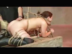Shibari Hawser Thraldom And Drubbing
