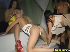 Bruno Dickenz,  Charli Shiin,  Coco Valentina,  Jmac attempt a hot party